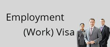 Employment (Work) Visa